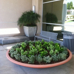 Welltower Landscape Maintenance in Santa Clarita