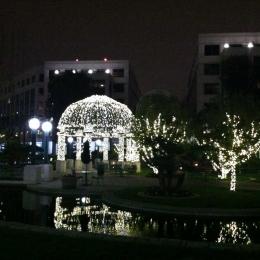 Water Garden Holiday Decor 2014
