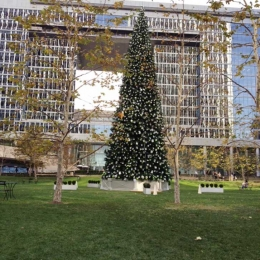 Century Plaza Towers Holiday Decor 2011