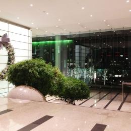 Century Plaza Towers Holiday Decor 2011