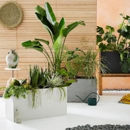 Cityscape Planters Triple